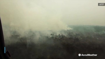 6,000 troops ordered to help fight forest fires
