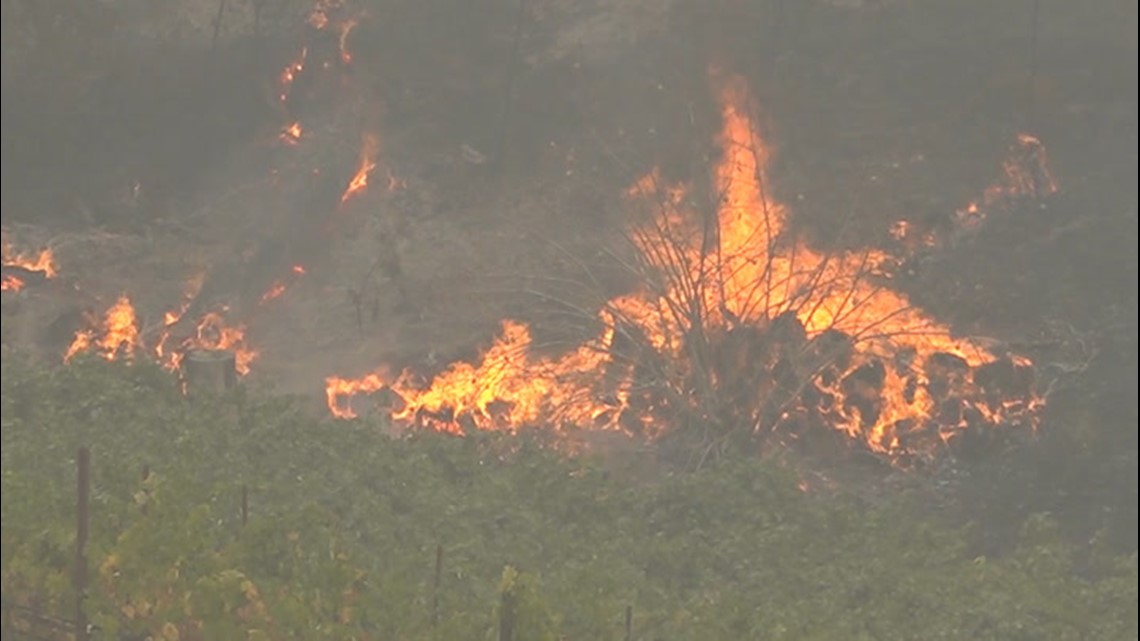 Dry vegetation offers troubling outlook for wildfire season