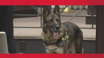 Indiana K9 passes away after distinguished military and police career