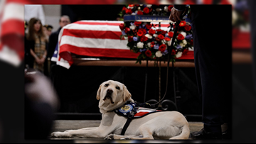 11 Moments we'll remember in honor of George H.W. Bush