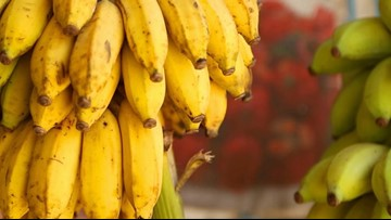 There Could be a Reduction in Bananas and Other Fresh Produce Due to Climate Change