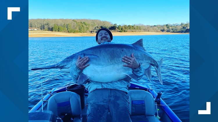 Tennessee man reels in potentially record-breaking fish