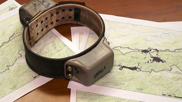 GPS Bear Collar on top of maps Great Smoky Mountains