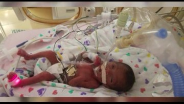 NICU babies from hurricane zone transported to Charlotte