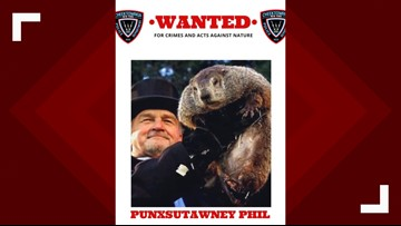 NY police department issues warrant for Punxsutawney Phil