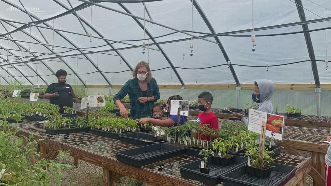 Louisville Grows looks to educate on importance on community gardens