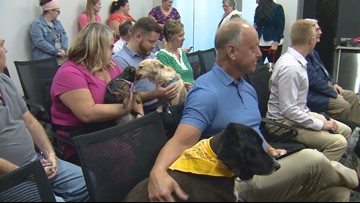 Jeffersonville 'most pet-friendly' city in Indiana