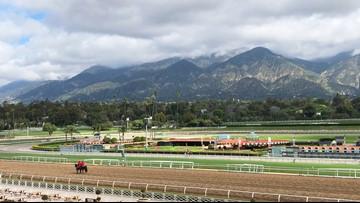 24th horse death occurs at Santa Anita