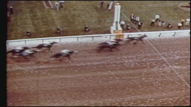 Dancer's Image: The first horse to win...and lose the Kentucky Derby