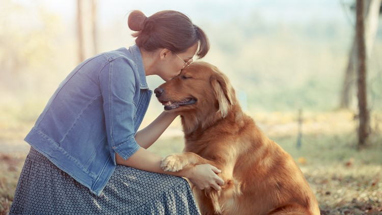 Kentucky Humane Society competing in 'Petco Love Story' grant competition
