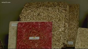Kentucky hemp business is booming