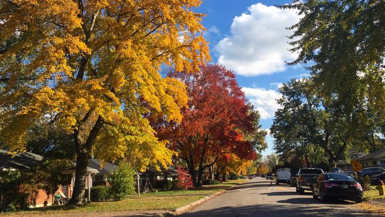 Fall foliage forecast! Where and when to see beautiful fall colors in Kentuckiana