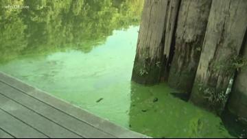 Harmful algae blooms in Ohio River could affect swimming portion of 2019 IRONMAN