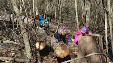 Mother Nature at its best: Thrive Forest School creates education foundation for preschoolers