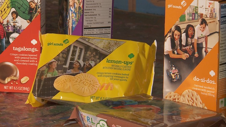 Local Girl Scouts get creative online to sell famous cookies