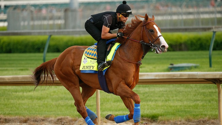 The undefeated 2-year-old comes to the Baltimore race as the favorite.