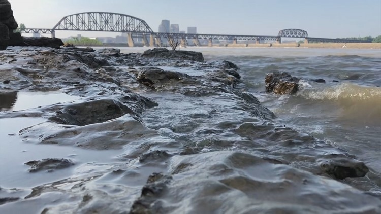 How fossils tell Kentuckiana's geological story