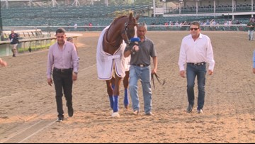 Justify returns to track at Churchill Downs for celebration