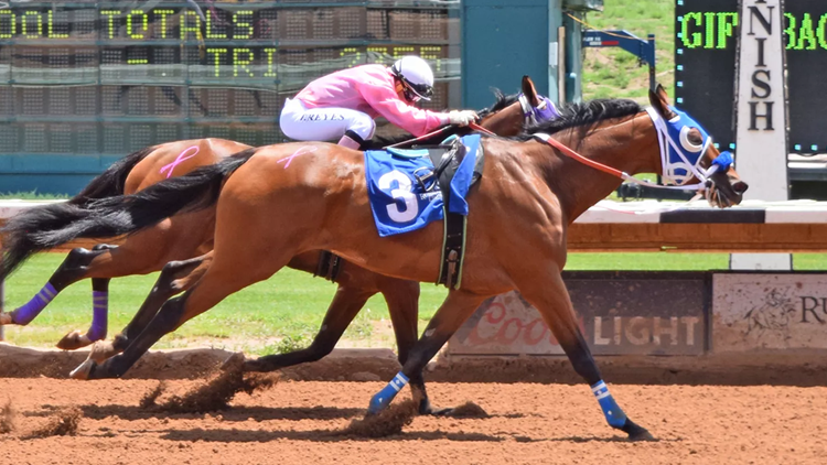 A viral video captured the moment when Fancy Stripe, a riderless horse, won at the racetrack in Ruidoso, New Mexico.