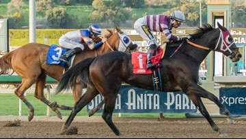 Death toll at California horse track rises to 19 as employees test soil