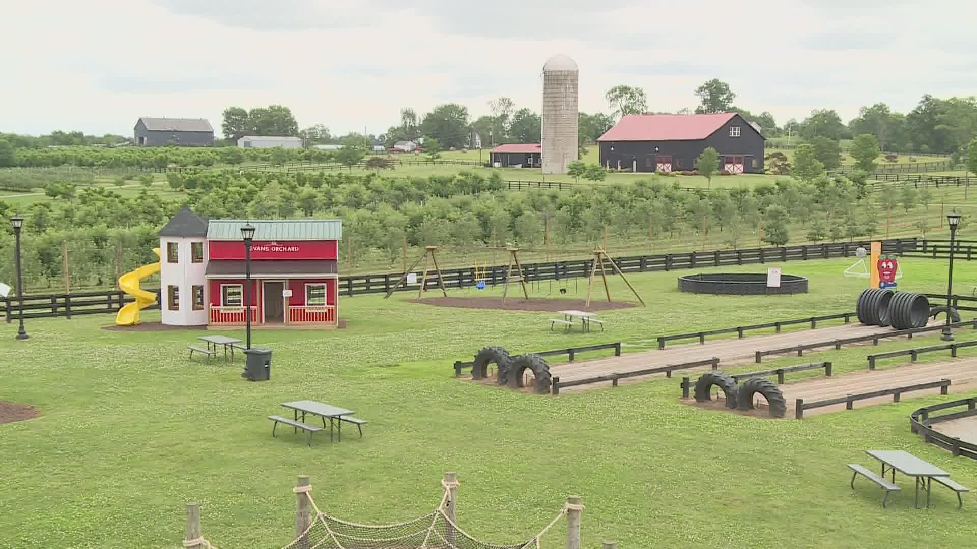 Kentucky Farm Sues Governor Over Covid 19 Restrictions Whas11 Com