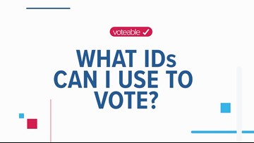 What can I use as an ID at the polls?