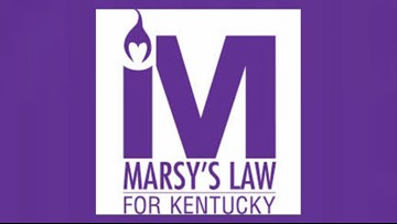 Marsy's Law petitions Kentucky Supreme Court to allow 2018 constitutional amendment be on 2020 ballot