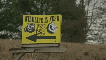 State officials access Wildlife in Need property for the first inspection in 3 years