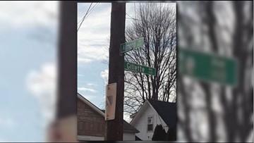 LMAS investigating after deceased dog found on street