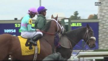 Fifth racehorse dies during Keeneland's fall meet