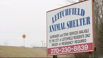 Kentucky animal shelter accused of stealing pets