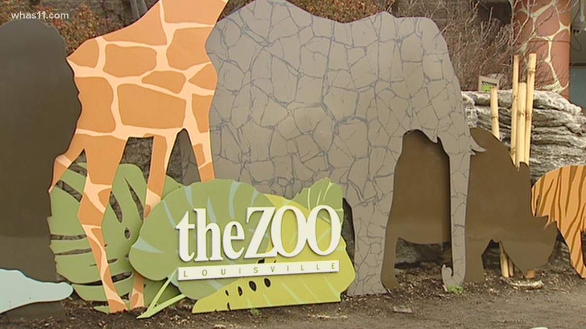 Louisville Zoo animals to receive COVID-19 vaccine