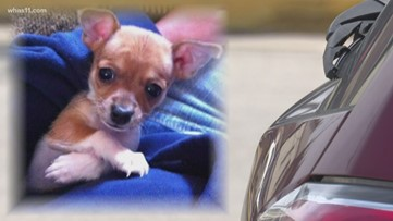 Controversy surrounds Spencer County Animal Control over way dog was killed, disposed of in dumpster