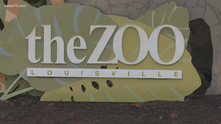 Dan Maloney officially working on the wild side as Louisville Zoo director