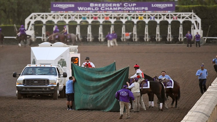 15-1 long shot fatally injured in Breeders' Cup Classic