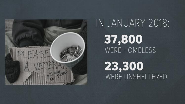 Veteran homelessness graphic 2