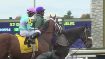 Jockey injured following horse's fatal injury in race at Keeneland