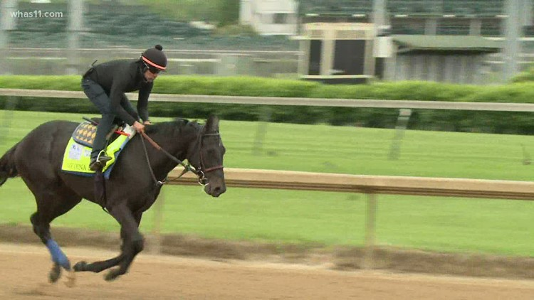Florida woman who raised Medina Spirit hopeful horse will be cleared