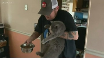 Family reunited with pet after Jeffersonville explosion