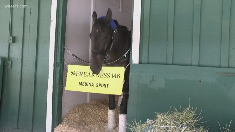 Medina Spirit cleared to race in the Preakness after passing 3 rounds of prerace drug tests