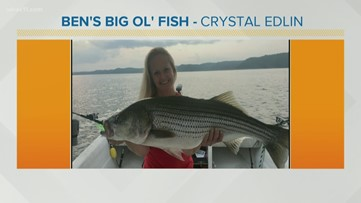 Ben's Big Ol' Fish 8.31