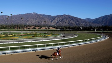 Breeders' Cup to add to safety measures at Santa Anita