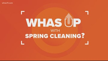 Why does Spring give us the cleaning bug?