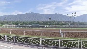 Breeders' Cup World Championships to stay at Santa Anita Park