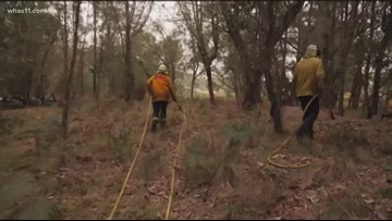 Local Australian woman on mission to help fires