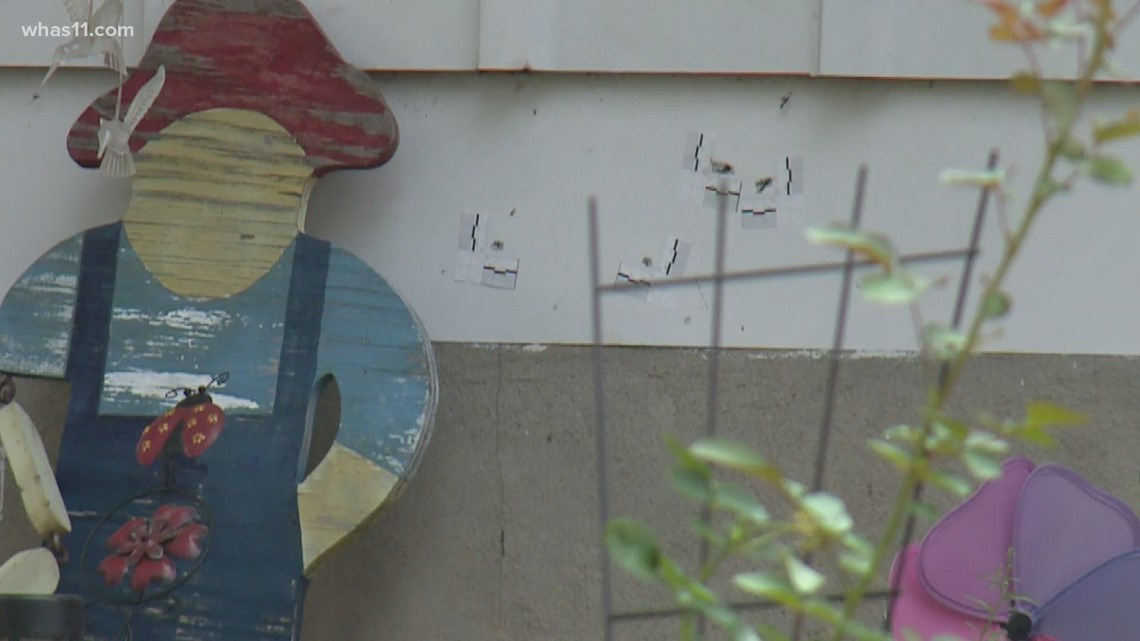 2 children hit by stray bullets in Newburg