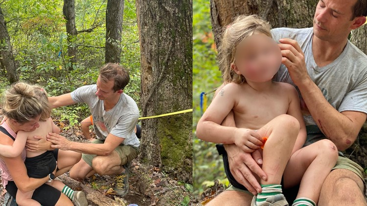 Few scratches, bruises: Four-year-old falls 70 feet off cliff at Red River Gorge in Kentucky