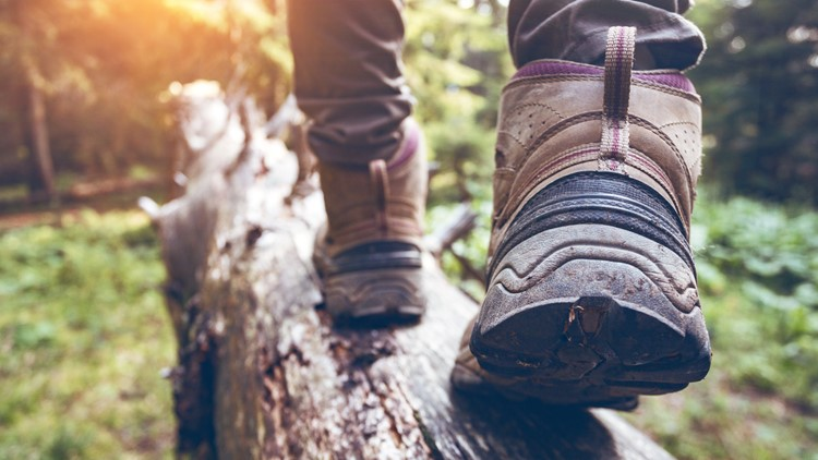 Get outdoors! Fees waived for a day at Daniel Boone recreation sites