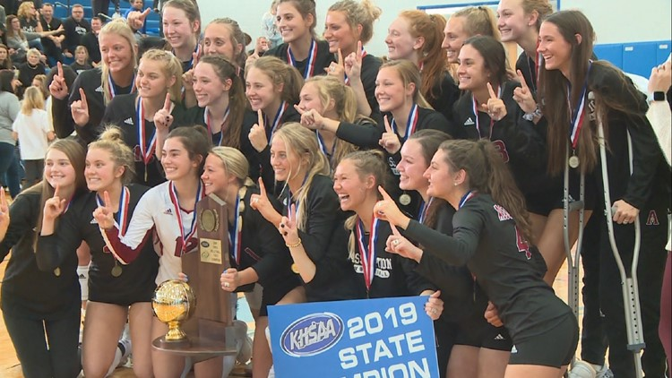 Assumption defeats Mercy for state volleyball title