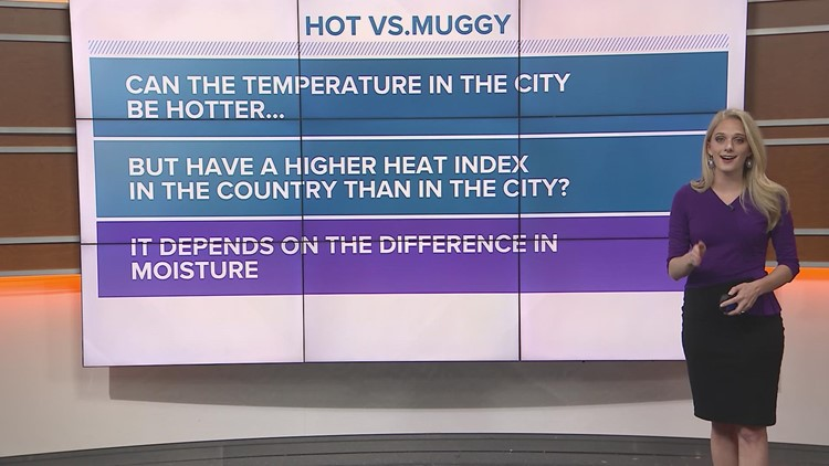 Difference between hot and muggy